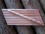 kikito鉛筆 10本